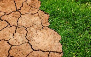 Dürre Erde Klima